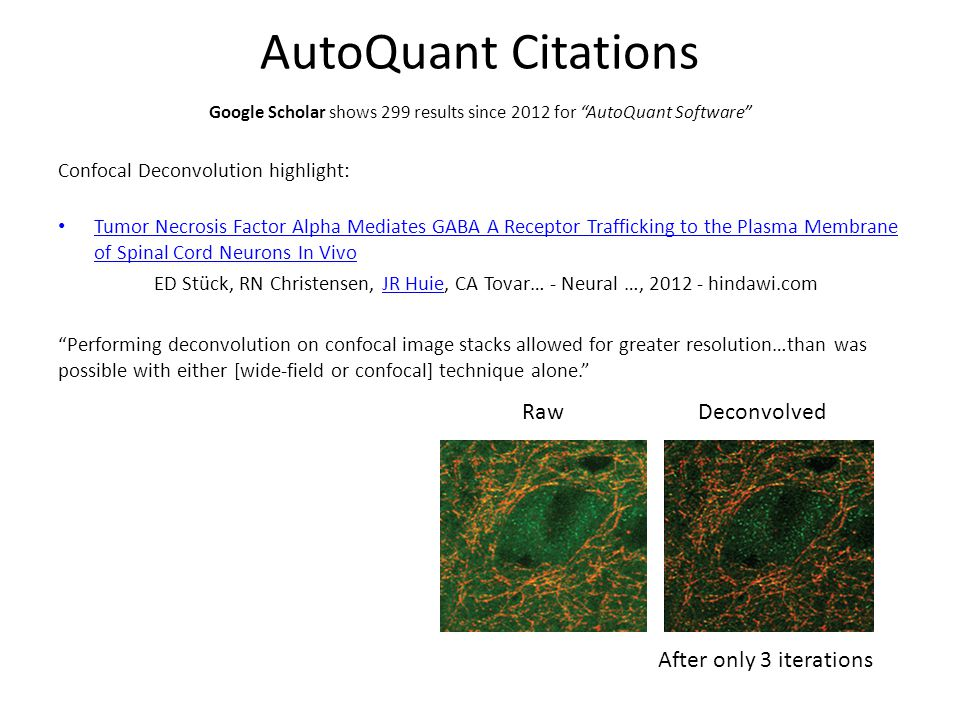 AutoQuant Citations Confocal Deconvolution highlight: Tumor Necrosis Factor Alpha Mediates GABA A Receptor Trafficking to the Plasma Membrane of Spinal Cord Neurons In Vivo Tumor Necrosis Factor Alpha Mediates GABA A Receptor Trafficking to the Plasma Membrane of Spinal Cord Neurons In Vivo ED Stück, RN Christensen, JR Huie, CA Tovar… - Neural …, 2012 - hindawi.comJR Huie Performing deconvolution on confocal image stacks allowed for greater resolution…than was possible with either [wide-field or confocal] technique alone. Google Scholar shows 299 results since 2012 for AutoQuant Software RawDeconvolved After only 3 iterations
