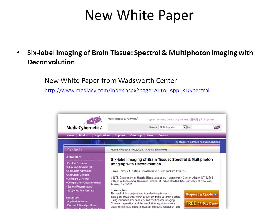 New White Paper Six-label Imaging of Brain Tissue: Spectral & Multiphoton Imaging with Deconvolution New White Paper from Wadsworth Center http://www.mediacy.com/index.aspx page=Auto_App_3DSpectral