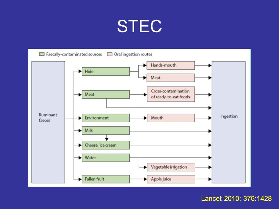 STEC Lancet 2010; 376:1428