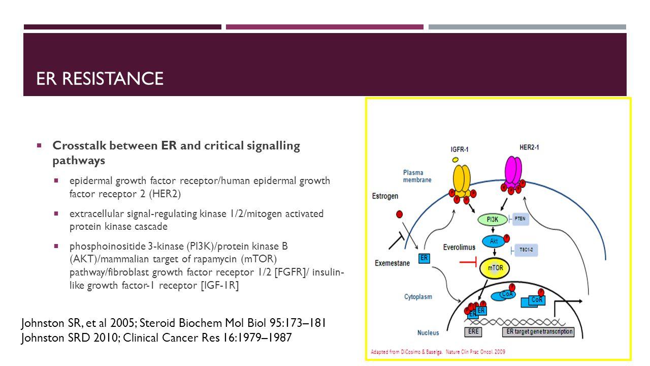ER RESISTANCE  Crosstalk between ER and critical signalling pathways  epidermal growth factor receptor/human epidermal growth factor receptor 2 (HER
