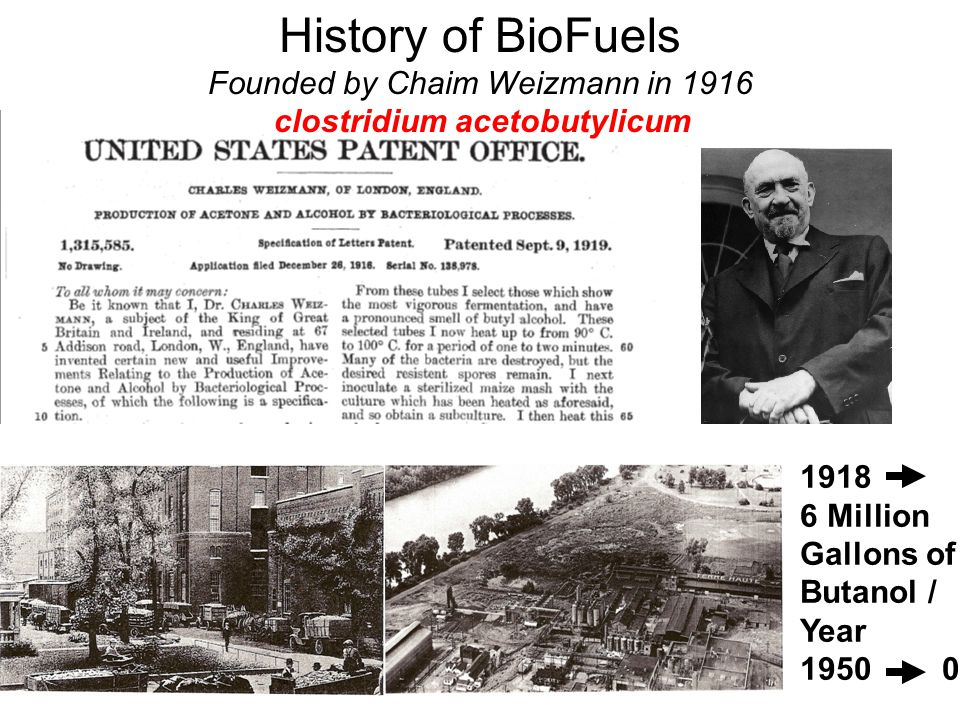 History of BioFuels Founded by Chaim Weizmann in 1916 clostridium acetobutylicum 1918 6 Million Gallons of Butanol / Year 1950 0