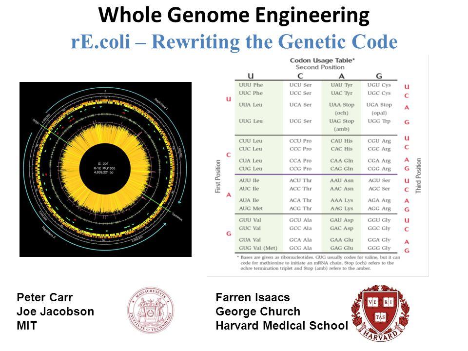Whole Genome Engineering rE.coli – Rewriting the Genetic Code Peter Carr Joe Jacobson MIT Farren Isaacs George Church Harvard Medical School
