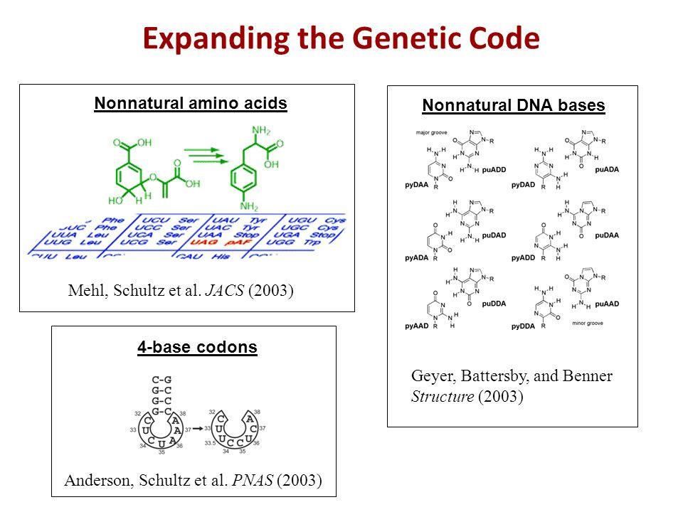 Expanding the Genetic Code Nonnatural amino acids Mehl, Schultz et al.