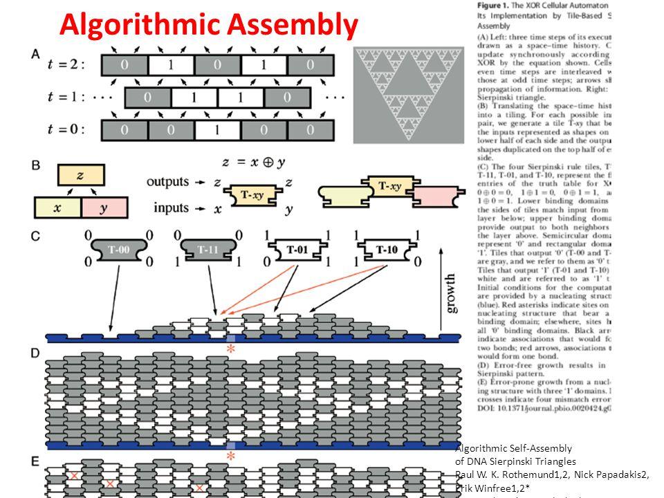 Algorithmic Self-Assembly of DNA Sierpinski Triangles Paul W.