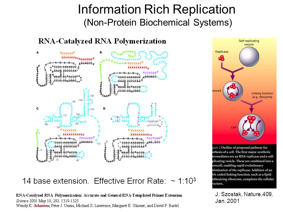 Information Rich Replication (Non-Protein Biochemical Systems) J. Szostak, Nature,409, Jan. 2001