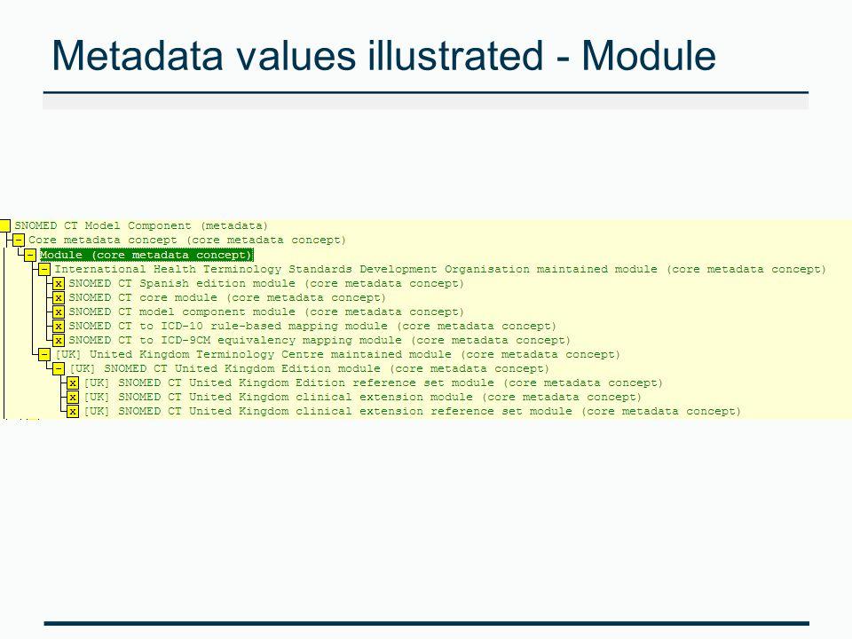 Metadata values illustrated - Module