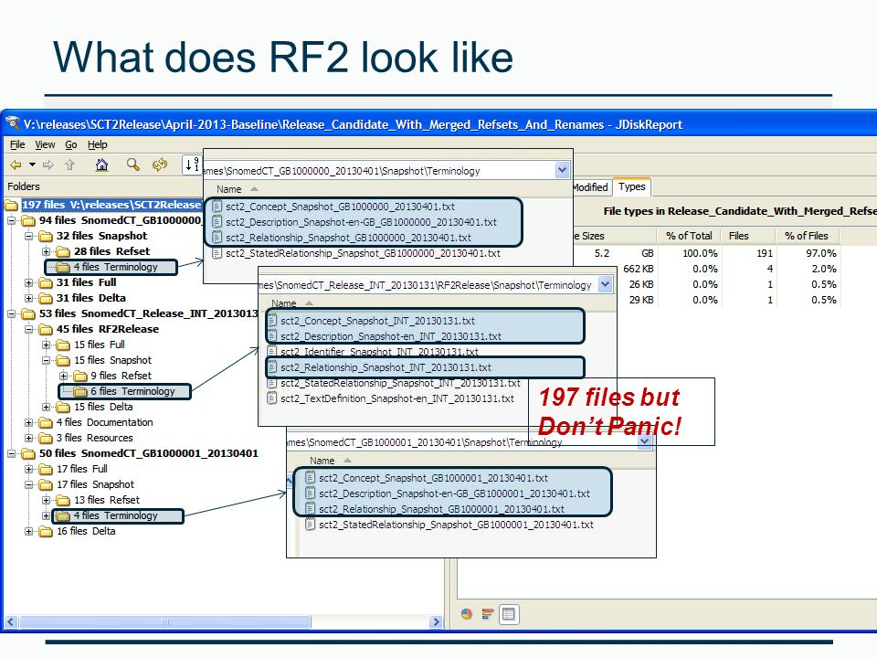 What does RF2 look like 197 files but Don't Panic!