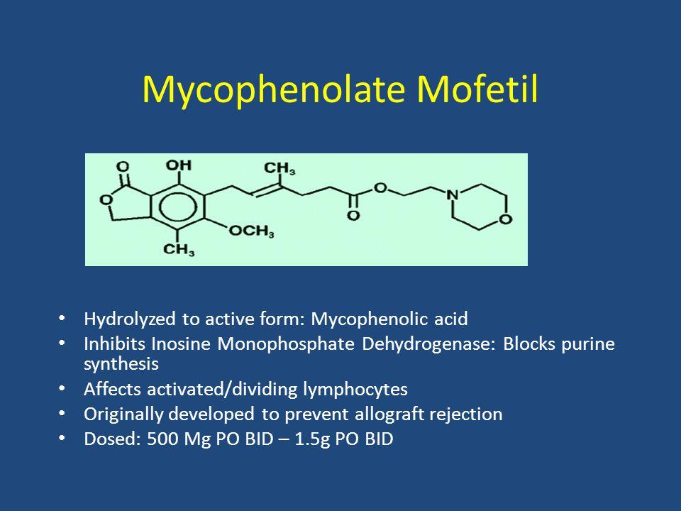 Mycophenolate Mofetil Hydrolyzed to active form: Mycophenolic acid Inhibits Inosine Monophosphate Dehydrogenase: Blocks purine synthesis Affects activ