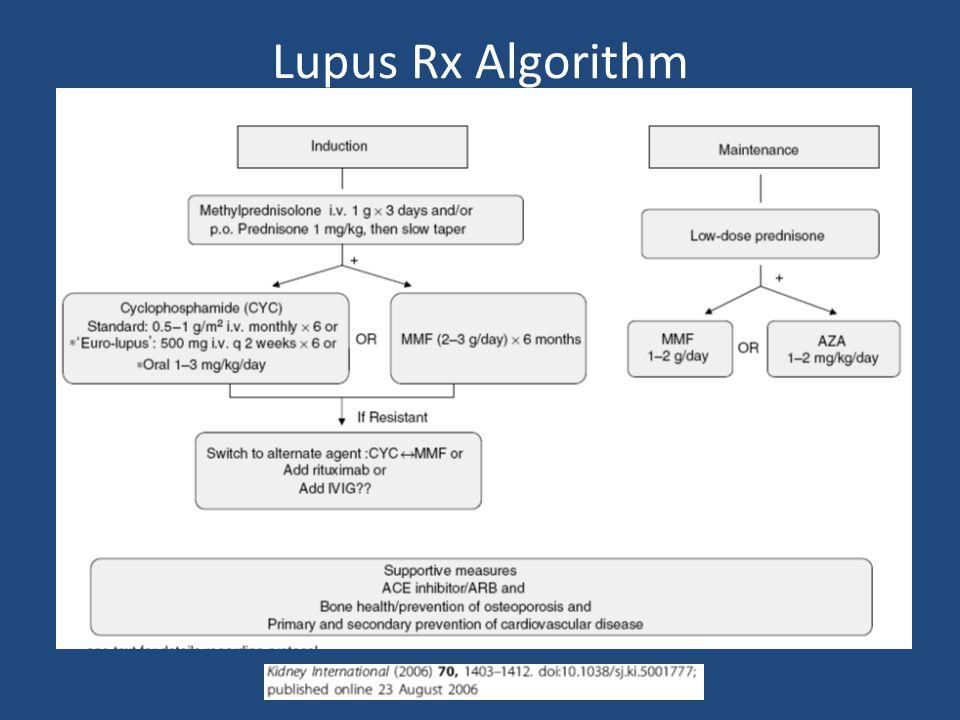 Lupus Rx Algorithm