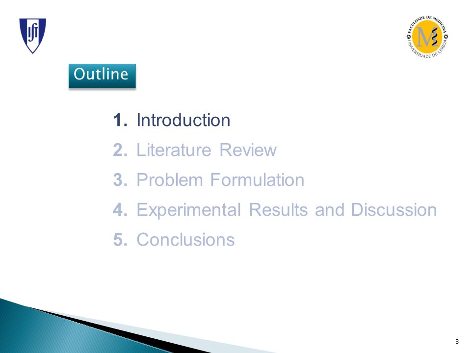 Outline 1. Introduction 2. Literature Review 3. Problem Formulation 4.