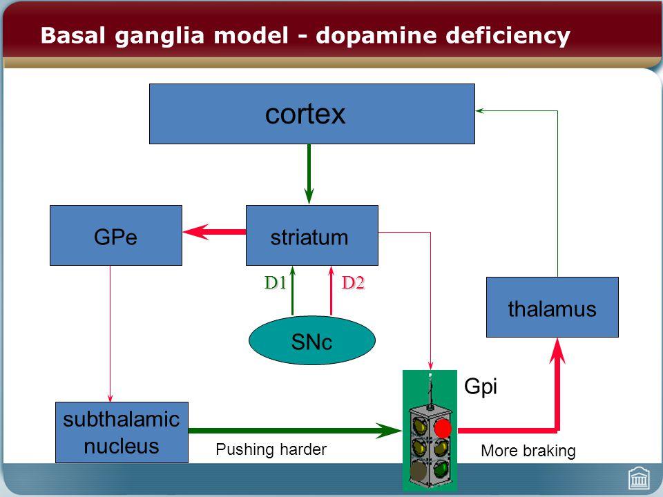 cortex striatumGPe subthalamic nucleus Gpi thalamus SNc D1D2 Basal ganglia model - dopamine deficiency More braking Pushing harder