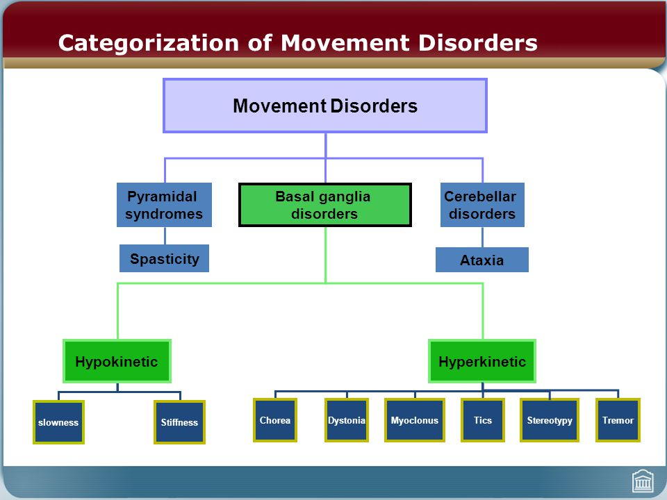 Categorization of Movement Disorders Movement Disorders Pyramidal syndromes Basal ganglia disorders Spasticity HypokineticHyperkinetic slownessStiffness ChoreaDystoniaMyoclonusTicsTremor Cerebellar disorders Ataxia Stereotypy