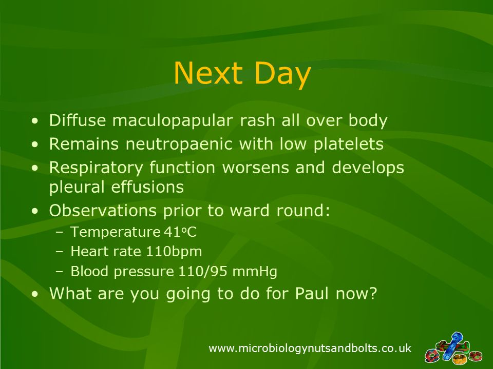 www.microbiologynutsandbolts.co.uk Next Day Diffuse maculopapular rash all over body Remains neutropaenic with low platelets Respiratory function wors
