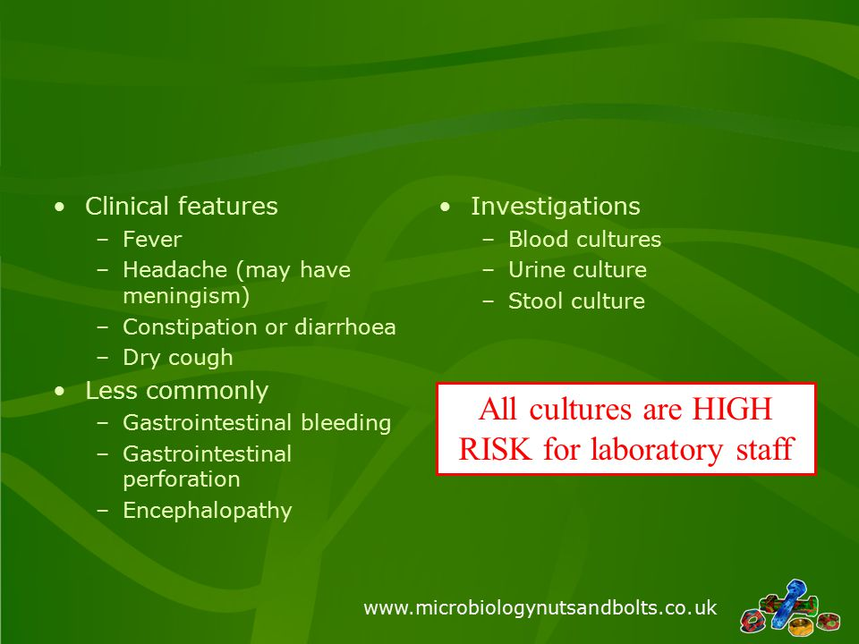 www.microbiologynutsandbolts.co.uk Clinical features –Fever –Headache (may have meningism) –Constipation or diarrhoea –Dry cough Less commonly –Gastro