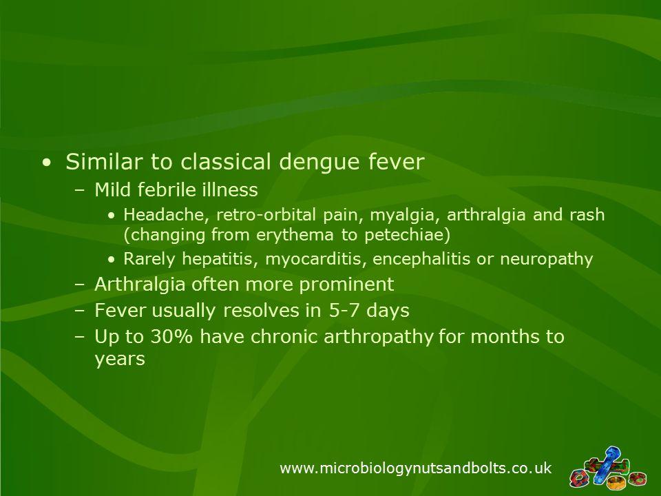 www.microbiologynutsandbolts.co.uk Similar to classical dengue fever –Mild febrile illness Headache, retro-orbital pain, myalgia, arthralgia and rash