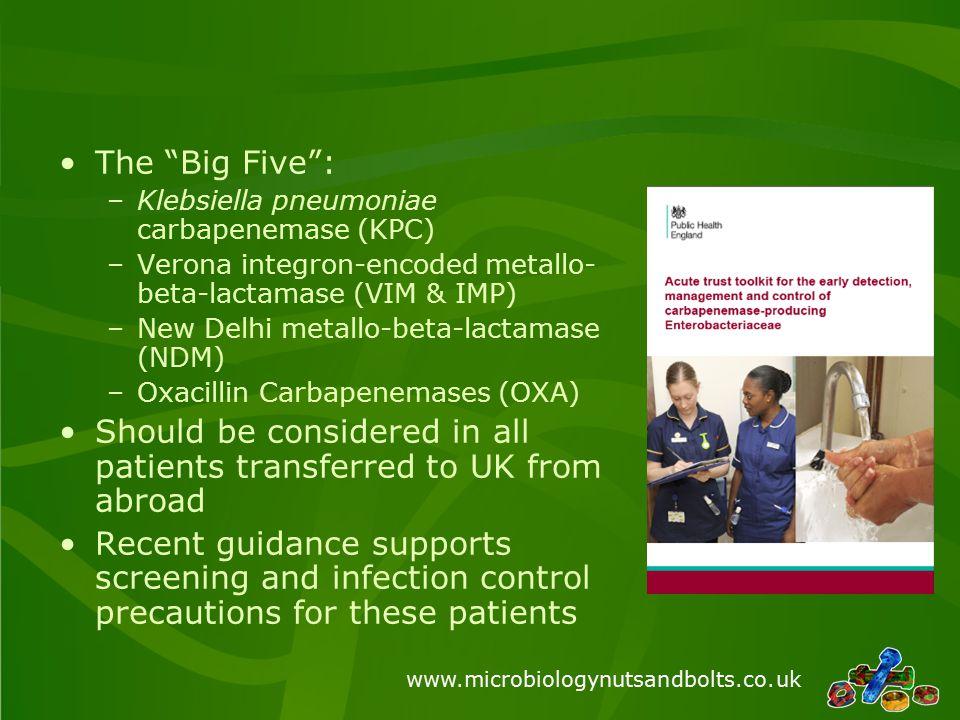 "The ""Big Five"": –Klebsiella pneumoniae carbapenemase (KPC) –Verona integron-encoded metallo- beta-lactamase (VIM & IMP) –New Delhi metallo-beta-lactam"
