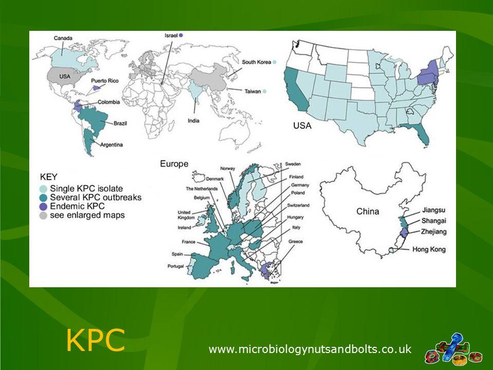 www.microbiologynutsandbolts.co.uk KPC