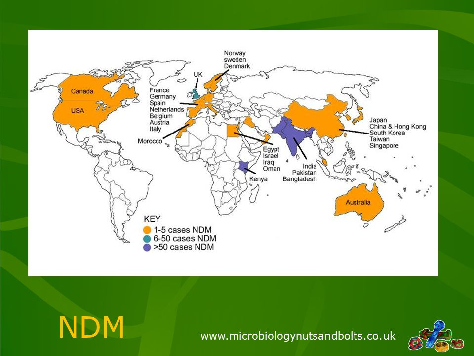 www.microbiologynutsandbolts.co.uk NDM