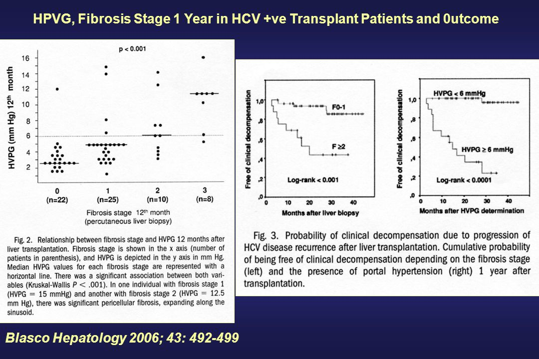 Blasco Hepatology 2006; 43: 492-499 HPVG, Fibrosis Stage 1 Year in HCV +ve Transplant Patients and 0utcome