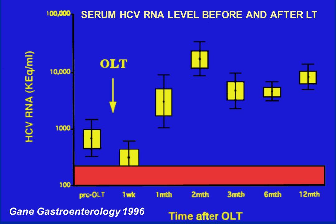 C.H.B. Gane Gastroenterology 1996 SERUM HCV RNA LEVEL BEFORE AND AFTER LT