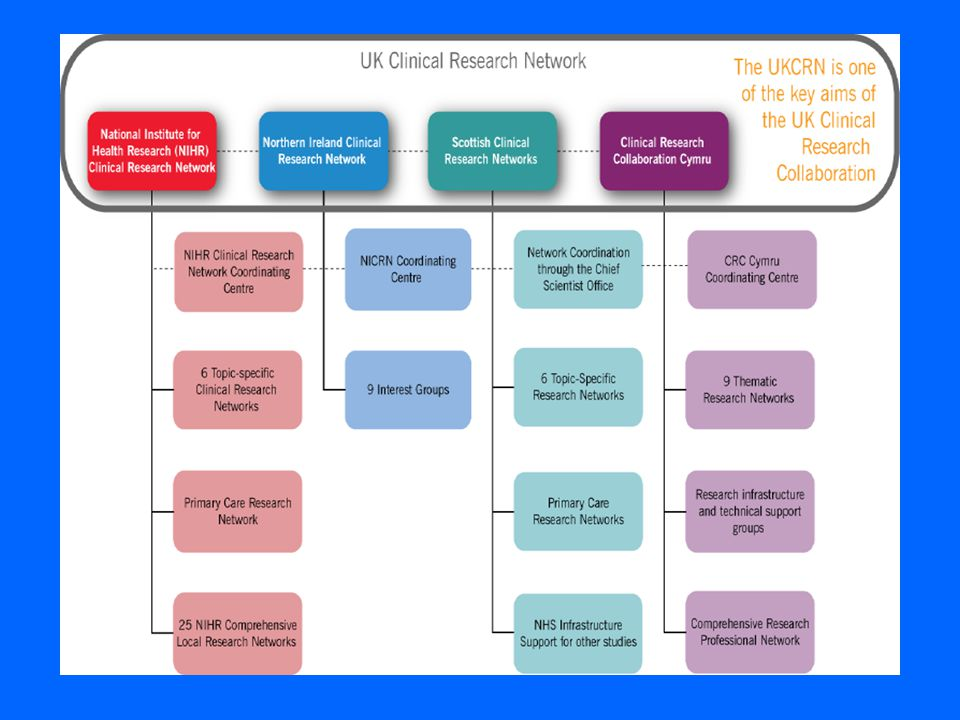 Performance Matrix Portfolio of studies Accrual Timelines (set up, completion) Data quality