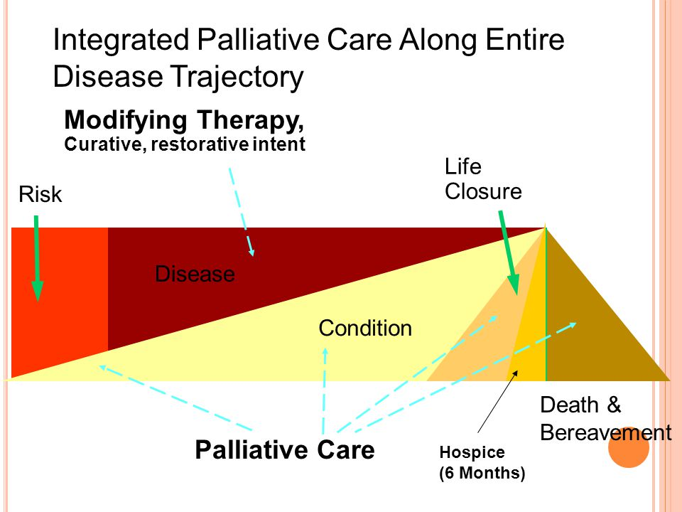 Death & Bereavement Modifying Therapy, Curative, restorative intent Life Closure Palliative Care Risk Disease Condition Integrated Palliative Care Along Entire Disease Trajectory Hospice (6 Months)