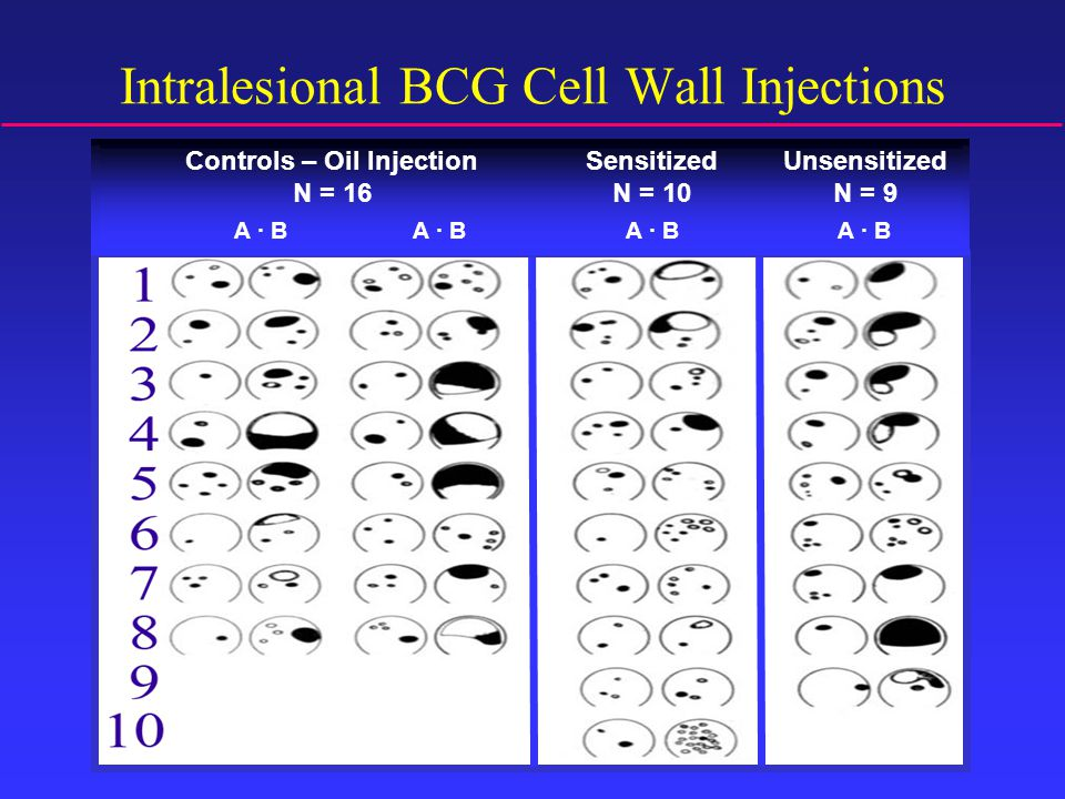 Intralesional BCG Cell Wall Injections A ∙ B Controls – Oil Injection N = 16 Sensitized N = 10 Unsensitized N = 9