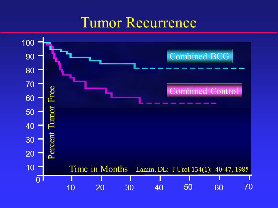 100 90 80 70 60 50 40 30 20 10 Time in Months 10 50 3040 70 6020 0 Combined BCG Combined Control Tumor Recurrence Lamm, DL: J Urol 134(1): 40-47, 1985 Percent Tumor Free Combined BCG Combined Control