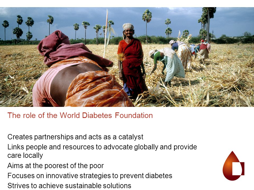 The role of the World Diabetes Foundation Creates partnerships and acts as a catalyst Links people and resources to advocate globally and provide care locally Aims at the poorest of the poor Focuses on innovative strategies to prevent diabetes Strives to achieve sustainable solutions
