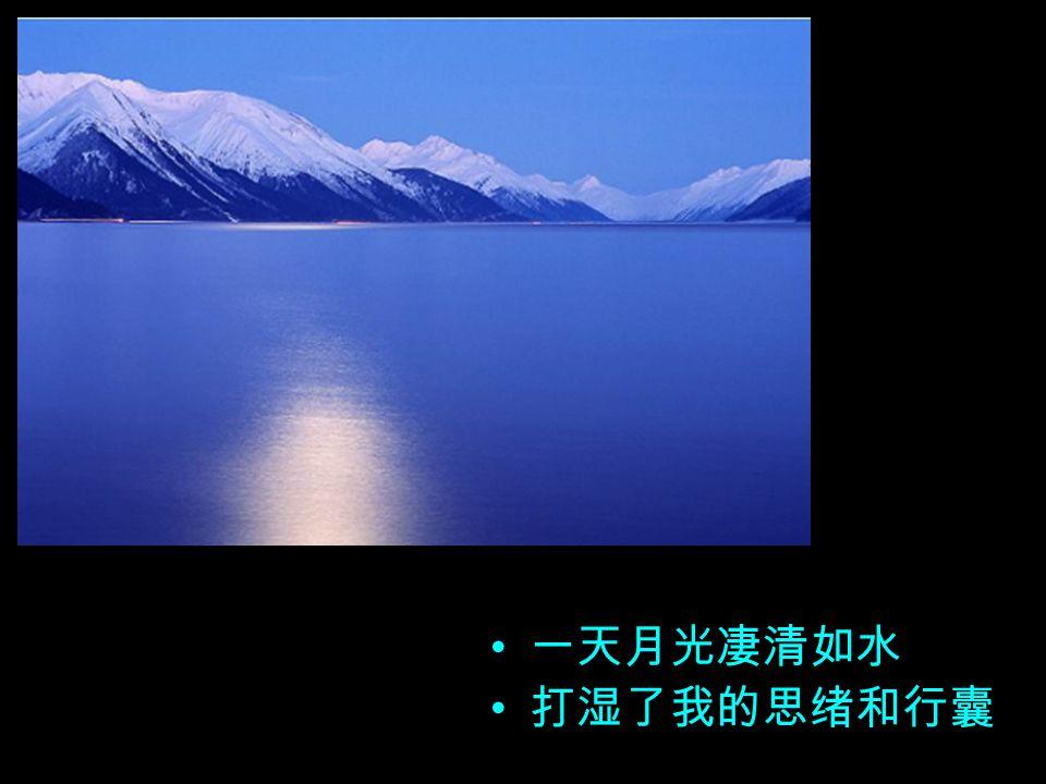 一叶小舟在轻轻荡漾 今晚迷失了它的方向