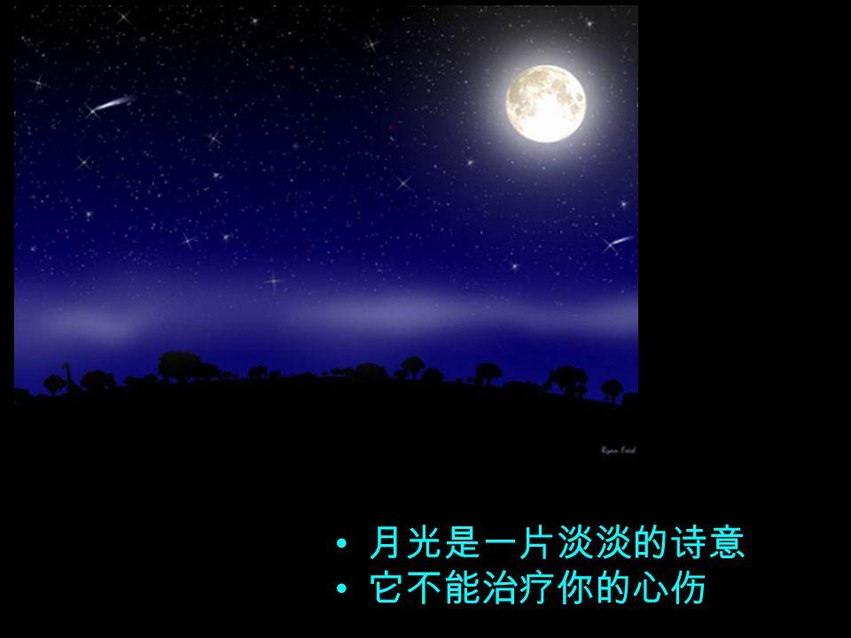 月光是一种野生植物 你不能收获它的馨香