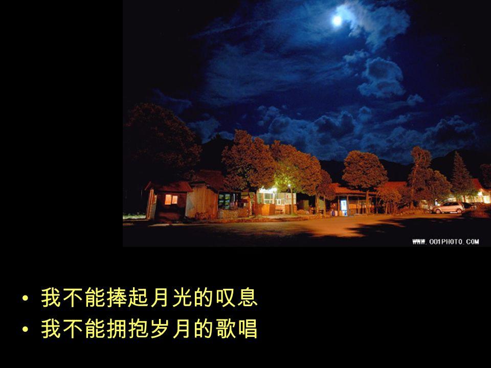 月光是溅落一地的音符 月光是随风飘散的惆怅