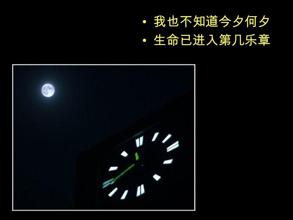 我不能捧起月光的叹息 我不能拥抱岁月的歌唱