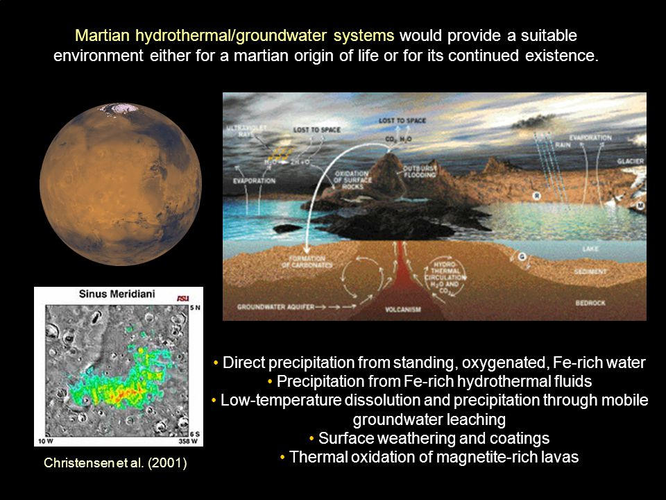 Martian hydrothermal/groundwater systems would provide a suitable environment either for a martian origin of life or for its continued existence.