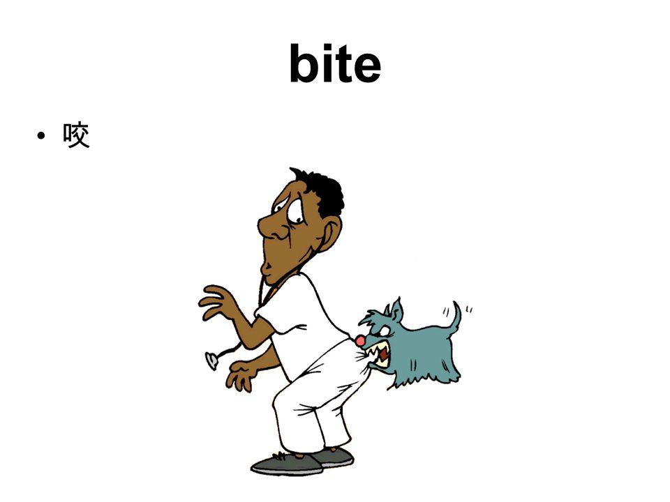 bite 咬
