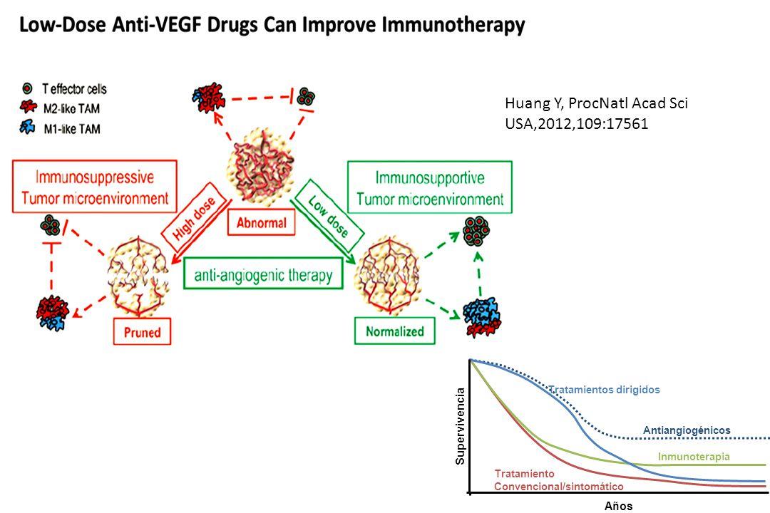 Huang Y, ProcNatl Acad Sci USA,2012,109:17561 Años Inmunoterapia Tratamientos dirigidos Supervivencia Antiangiogénicos Tratamiento Convencional/sintomático