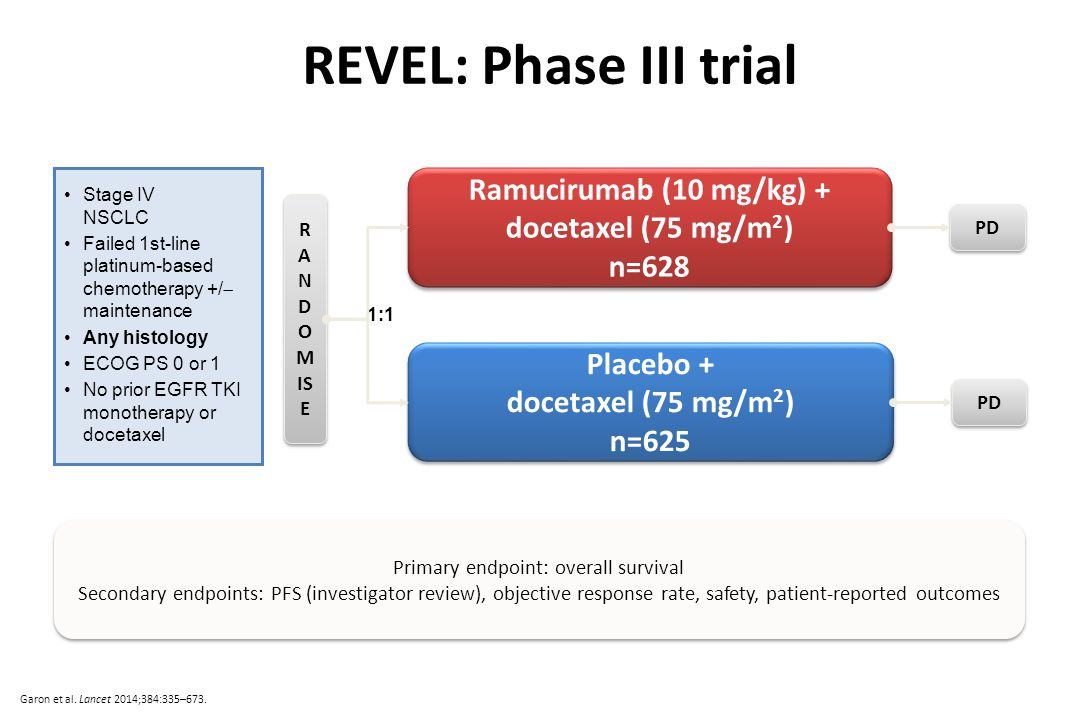 REVEL: Phase III trial Ramucirumab (10 mg/kg) + docetaxel (75 mg/m 2 ) n=628 Ramucirumab (10 mg/kg) + docetaxel (75 mg/m 2 ) n=628 Placebo + docetaxel (75 mg/m 2 ) n=625 Placebo + docetaxel (75 mg/m 2 ) n=625 R A N D O M IS E Stage IV NSCLC Failed 1st-line platinum-based chemotherapy +/  maintenance Any histology ECOG PS 0 or 1 No prior EGFR TKI monotherapy or docetaxel 1:1 PD Primary endpoint: overall survival Secondary endpoints: PFS (investigator review), objective response rate, safety, patient-reported outcomes Primary endpoint: overall survival Secondary endpoints: PFS (investigator review), objective response rate, safety, patient-reported outcomes Garon et al.