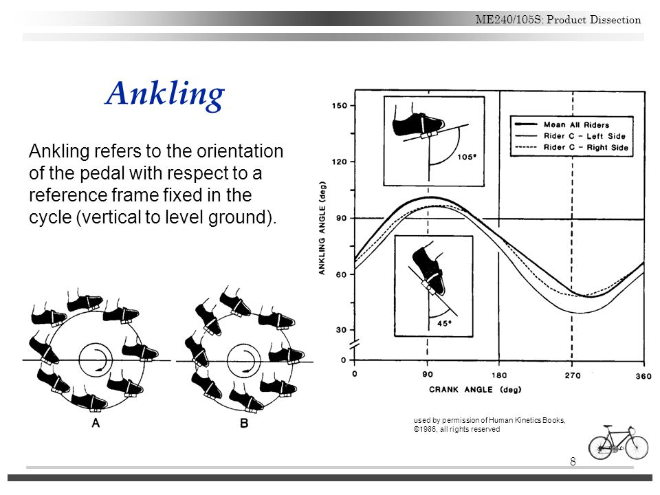 8 ME240/105S: Product Dissection Ankling used by permission of Human Kinetics Books, ©1986, all rights reserved Ankling refers to the orientation of t