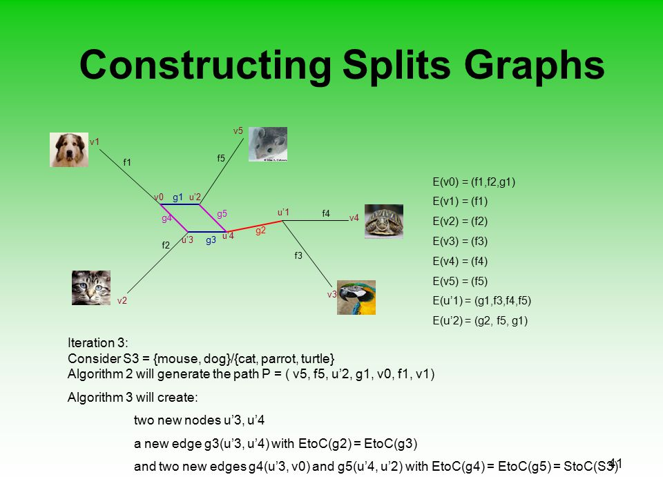 41 Constructing Splits Graphs f1 f2 f3 f5 f4 v0 Iteration 3: Consider S3 = {mouse, dog}/{cat, parrot, turtle} Algorithm 2 will generate the path P = (