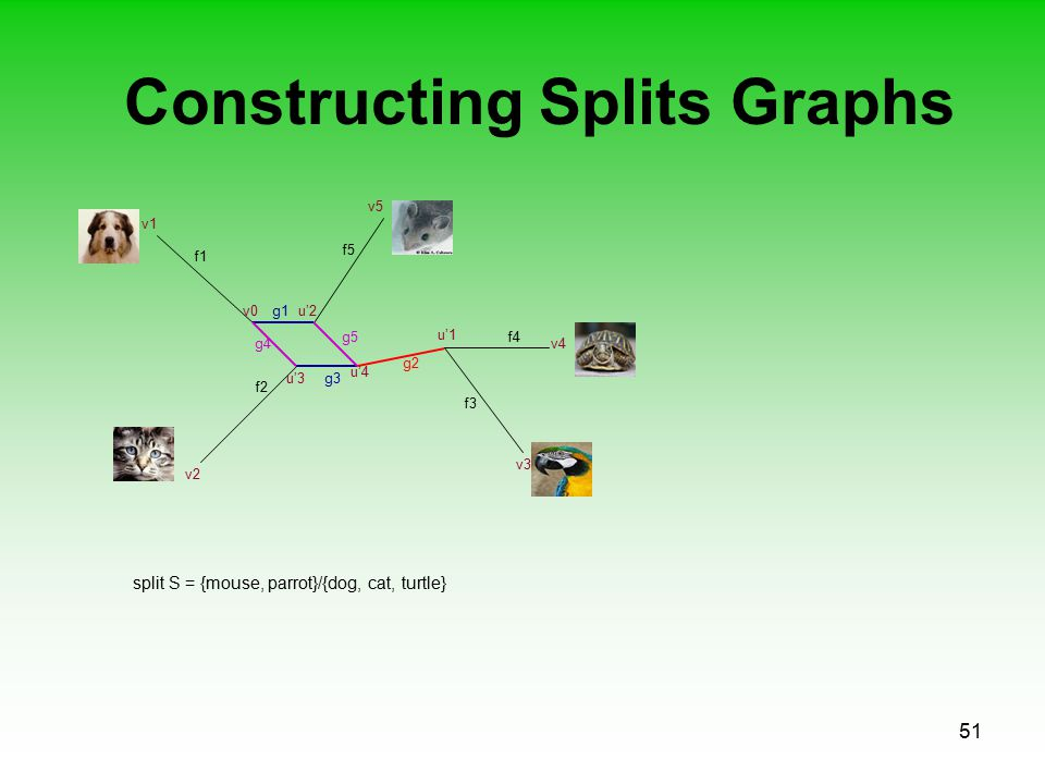 51 Constructing Splits Graphs f1 f2 f3 f5 f4 v0u'2 v1 v2 v4 v5 v3 g1 u'1 g2 u'3 u'4 g3 g4 g5 split S = {mouse, parrot}/{dog, cat, turtle}