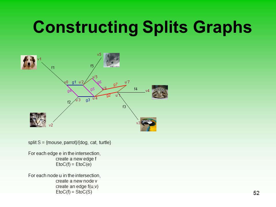 52 Constructing Splits Graphs f1 f2 f3 f5 f4 v0u'2 v1 v2 v4 v5 v3 g1 u'1g2 u'3 u'4 g3 g4 g5 split S = {mouse, parrot}/{dog, cat, turtle} For each edge