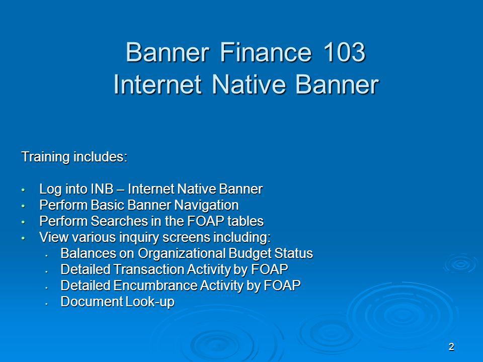 33 Banner FGITRND displays the Detailed Transaction Activity.
