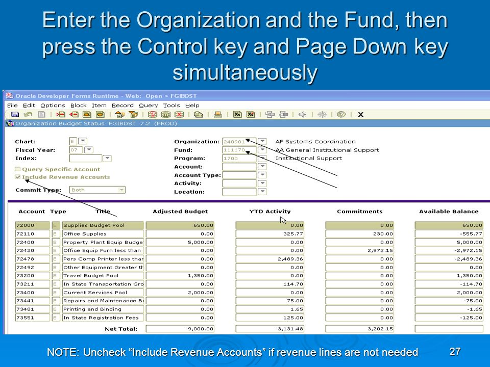 27 Enter the Organization and the Fund, then press the Control key and Page Down key simultaneously NOTE: Uncheck Include Revenue Accounts if revenue lines are not needed