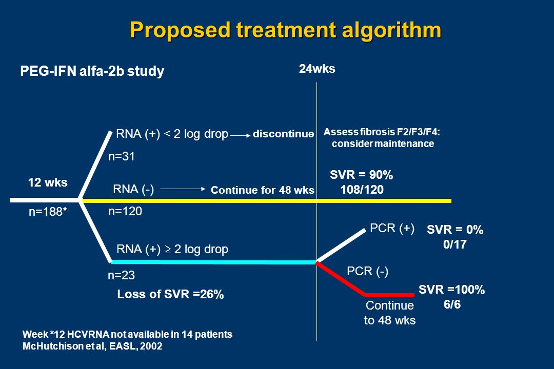 Week *12 HCVRNA not available in 14 patients McHutchison et al, EASL, 2002 discontinue RNA (+) < 2 log drop n=31 Assess fibrosis F2/F3/F4: consider maintenance n=188* 12 wks RNA (-) n=120 Continue for 48 wks SVR = 90% 108/120 PCR (+) SVR = 0% 0/17 RNA (+)  2 log drop n=23 Loss of SVR =26% 24wks PCR (-) Continue to 48 wks SVR =100% 6/6 Proposed treatment algorithm PEG-IFN alfa-2b study