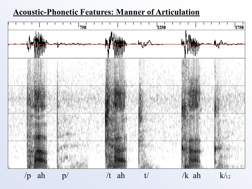 12 Acoustic-Phonetic Features: Manner of Articulation /p ah p/ /t ah t/ /k ah k/