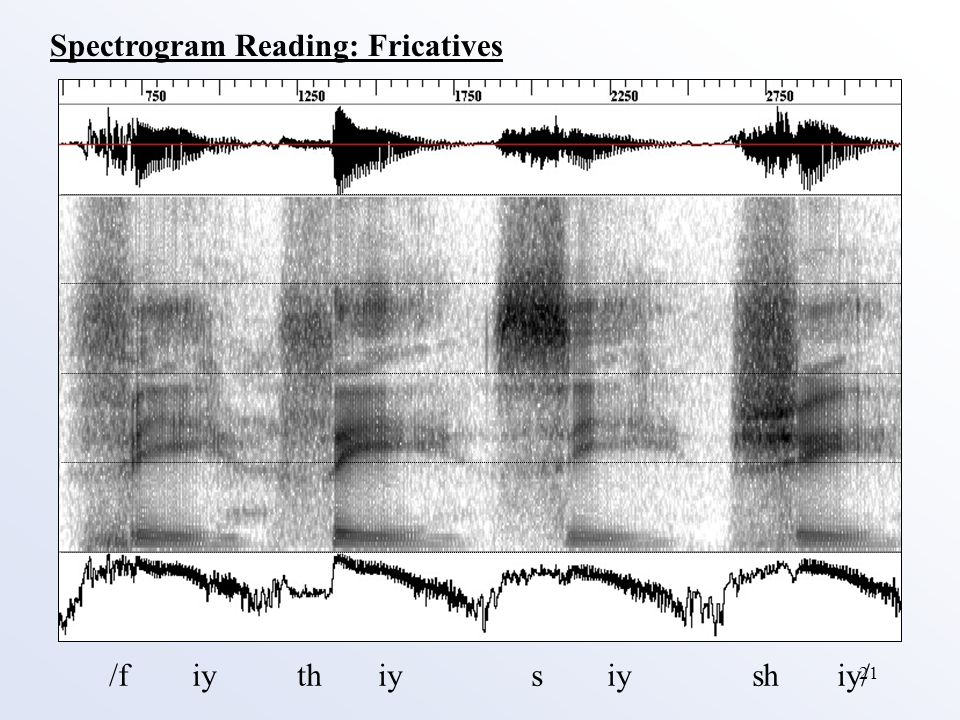 21 Spectrogram Reading: Fricatives /f iy th iy s iy sh iy/