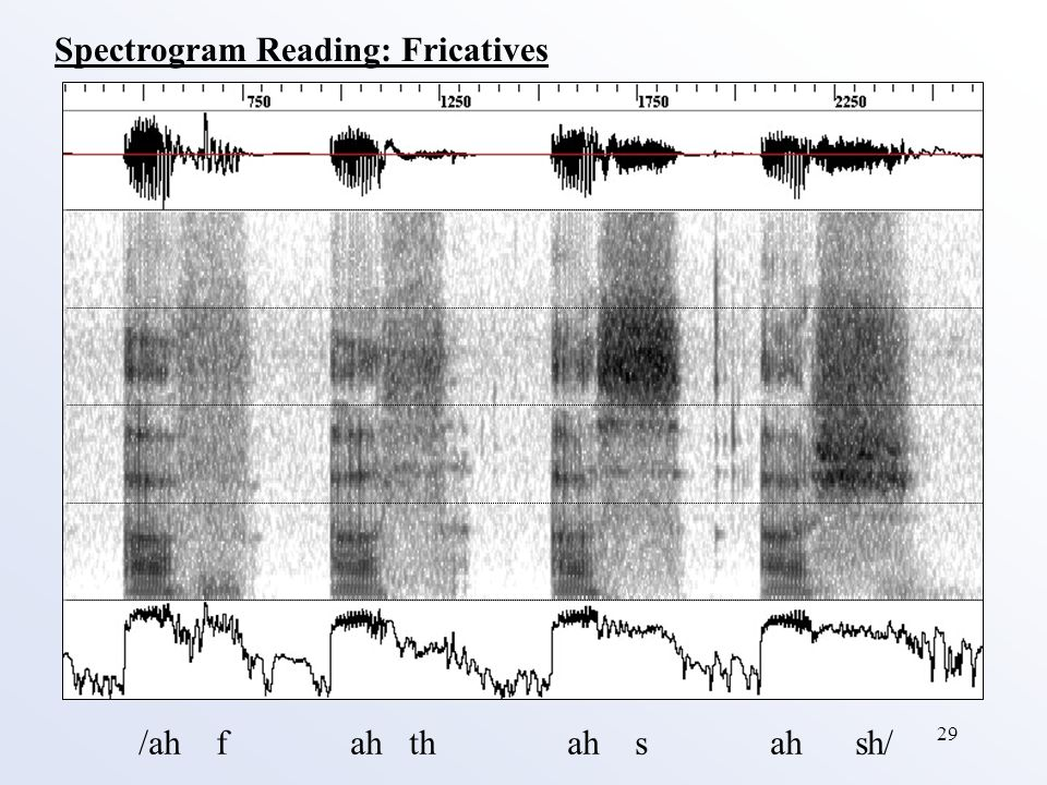 29 /ah f ah th ah s ah sh/ Spectrogram Reading: Fricatives