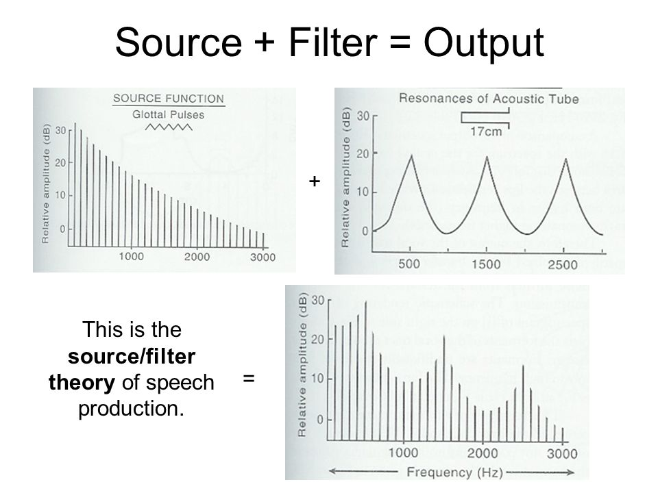 Source + Filter = Output + = This is the source/filter theory of speech production.