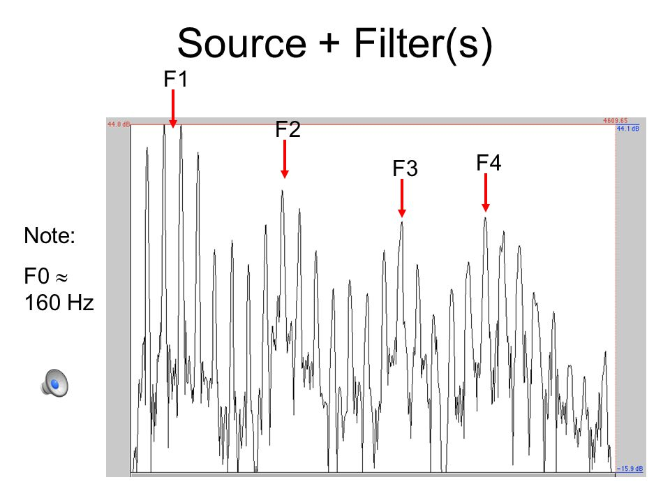 Women and Men Both source and filter characteristics differ reliably between men and women F0: depends on length of vocal folds shorter in women  higher average F0 longer in men  lower average F0 Formants: depend on length of vocal tract shorter in women  higher formant frequencies longer in men  lower formant frequencies