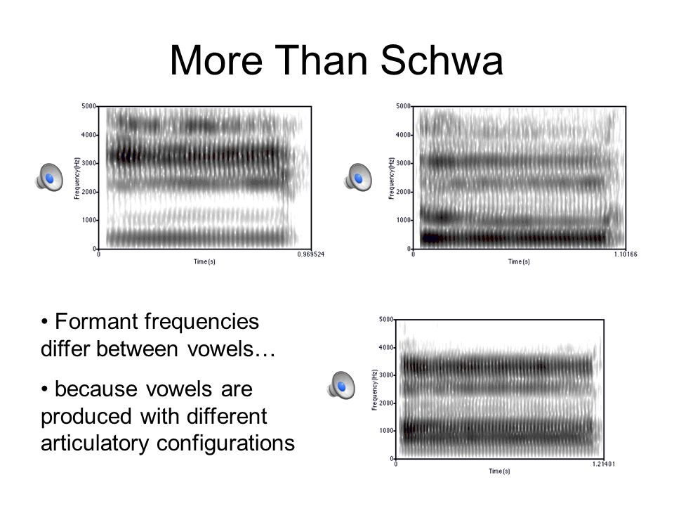 More Than Schwa Formant frequencies differ between vowels… because vowels are produced with different articulatory configurations
